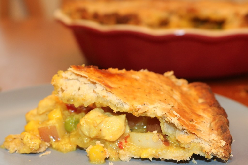 Chicken-Pot-Pies-by-Home-Made-Food-Junkie-1024x683 14 MOUTHWATERING CHICKEN RECIPES