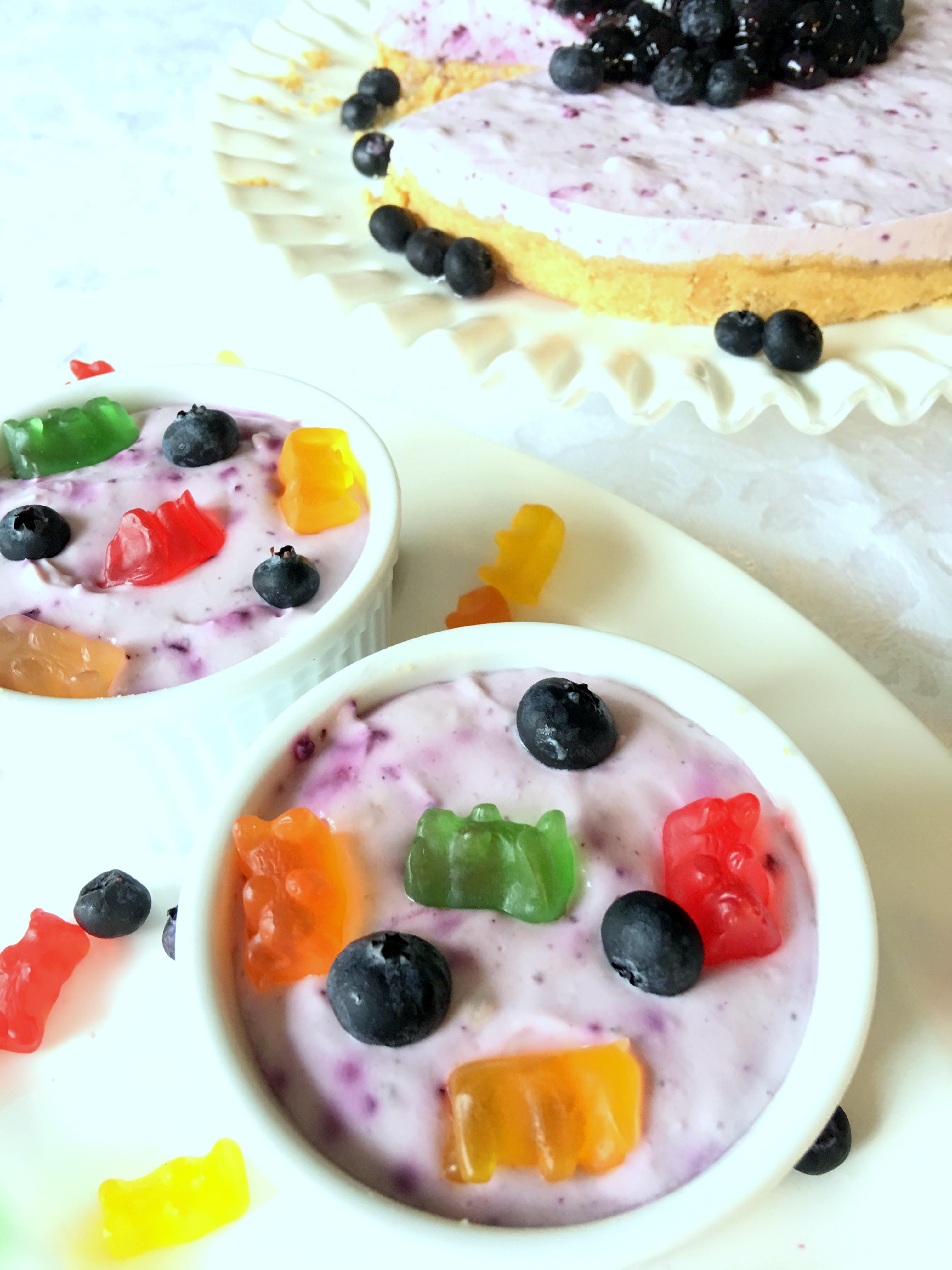 Frozen Blueberry Yogurt Dessert