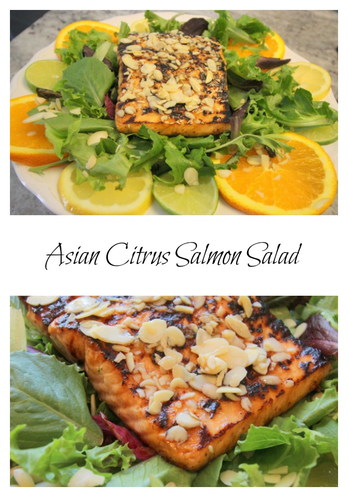 Asian-Citrus-Salmon-Salad-Pinterest-Image Asian Citrus Salmon Salad